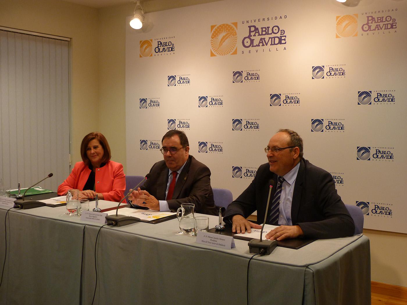 La Mesa del Tercer Sector participará en un diagnóstico de entidades sociales andaluzas