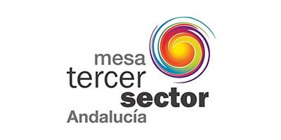 Mesa del Tercer Sector de Andalucía